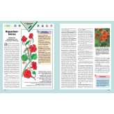 Heilkräfte der Pflanzen, Band 2