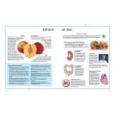 Heilkräfte der Nahrung, Band 1